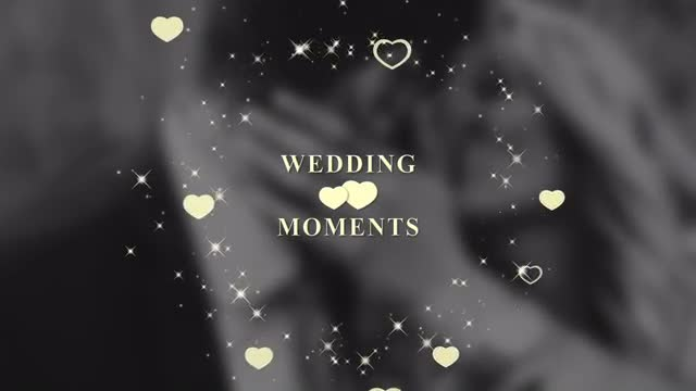 Wedding Titles - After Effects 92645