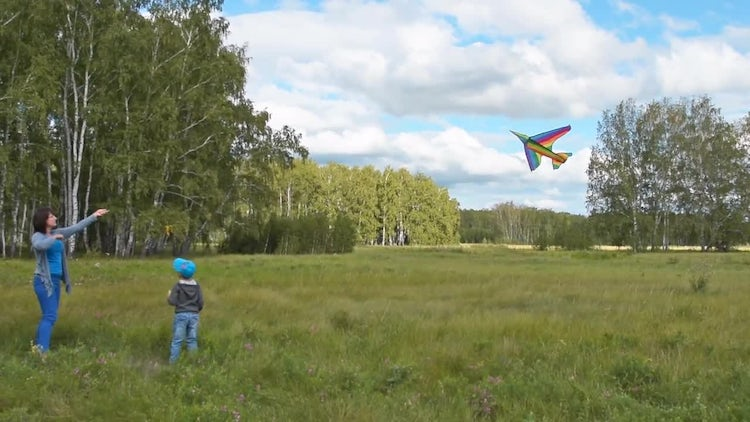 Mother And Little Son Flying Kite: Stock Video