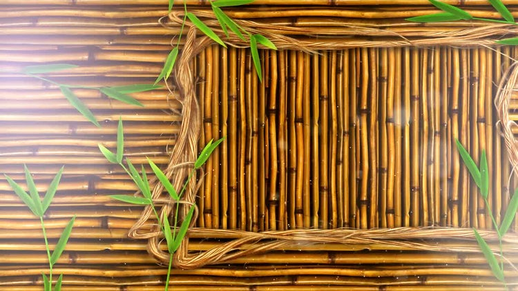 Bamboo Walls Background: Stock Motion Graphics