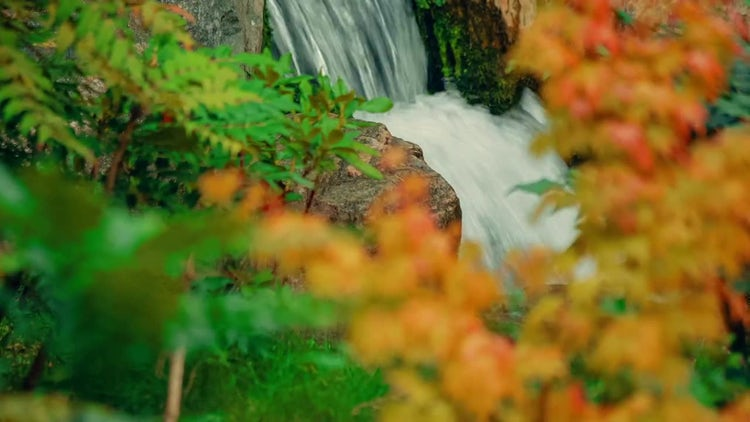 Waterfall In Beautiful Autumn Garden: Stock Video