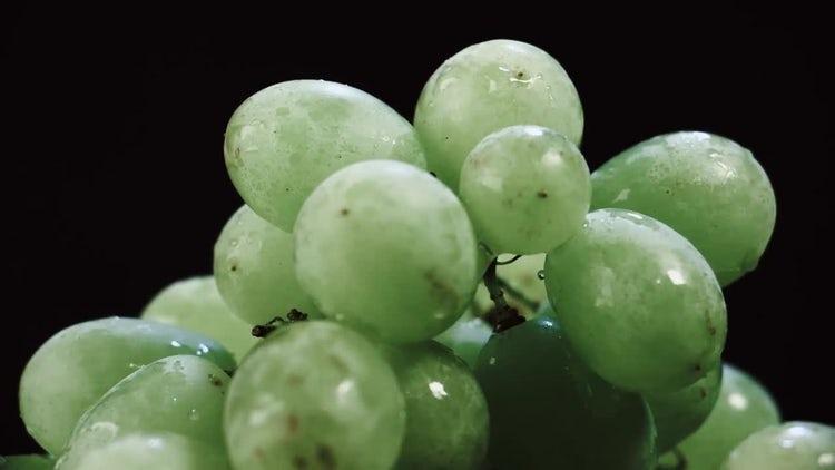 Fresh Organic Grapes: Stock Video