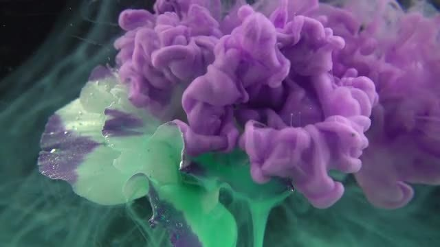Purple Paint On Green Flower: Stock Video