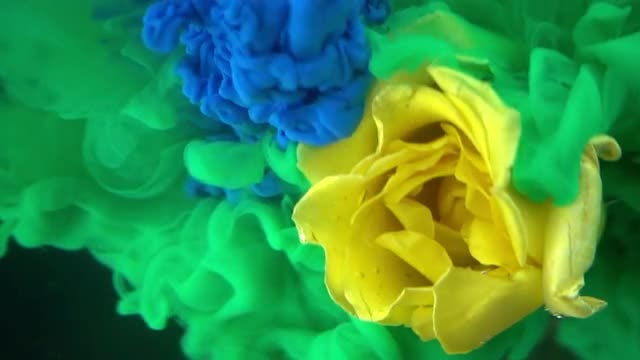 Green And Blue Paints Swirling: Stock Video