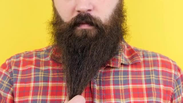 Man Playing With His Beard: Stock Video