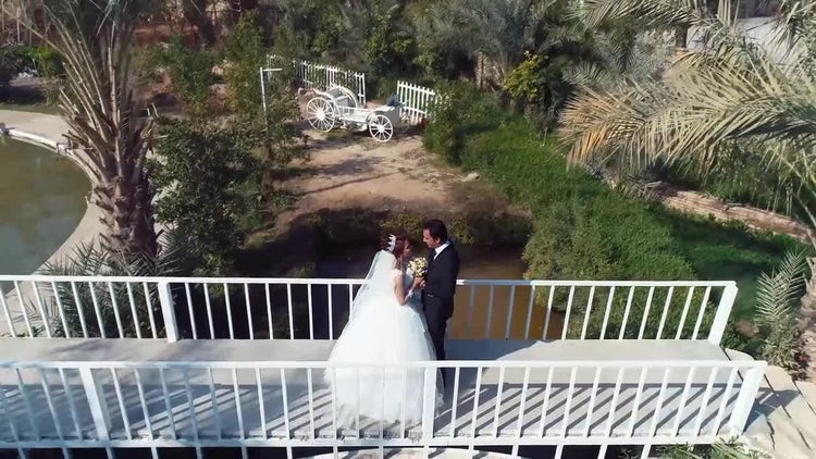 Bride And Groom On Bridge: Stock Video