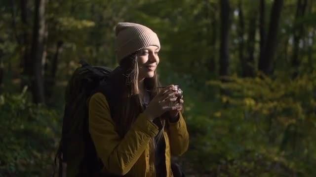 Tourist Drinking Tea In Forest: Stock Video