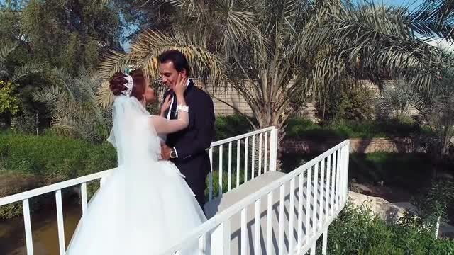 Bride And Groom On Bridge: Stock Video