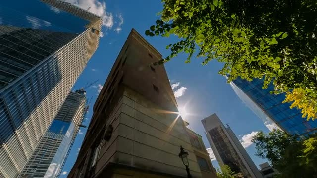 Low-angle Shot Of Tall Buildings: Stock Video