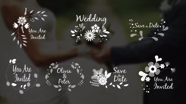 7 Wedding Ornaments With Flowers: After Effects Templates