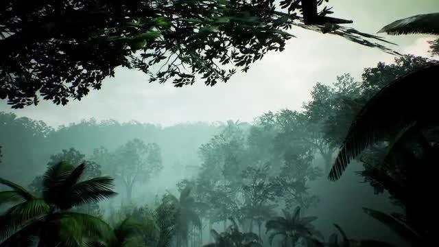 Green Jungle: Stock Motion Graphics