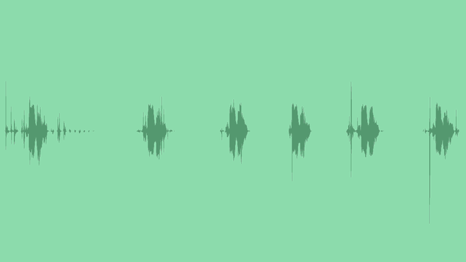 Domestic Rustle: Sound Effects