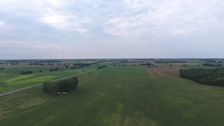 Midwest Drone Farmland Panorama: Stock Video