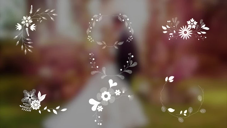 7 Wedding Ornaments With Flowers: Stock Motion Graphics
