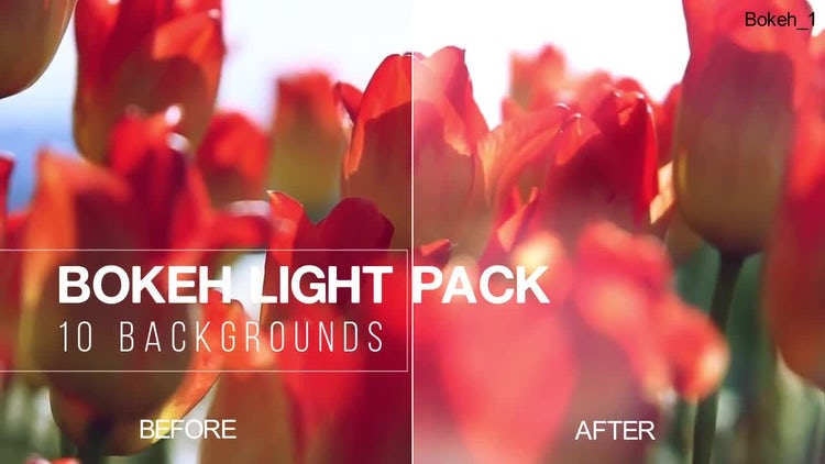 Bokeh Light Pack: Stock Motion Graphics