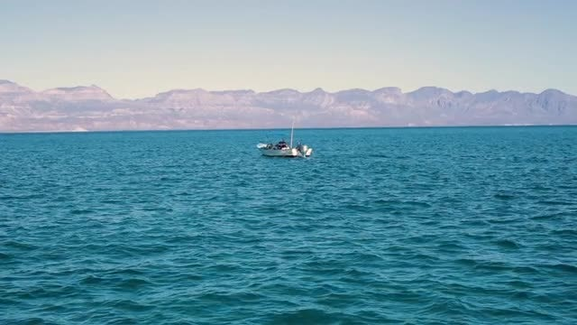 Small Boat Sailing On Water: Stock Video