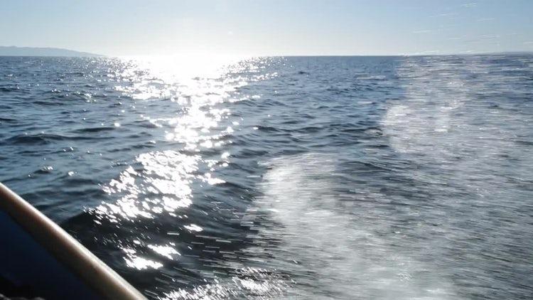 POV Boat Ride: Stock Video