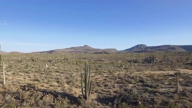 Moving Through The Desert: Stock Video