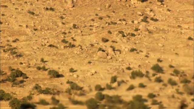 Heat Haze In The Desert : Stock Video