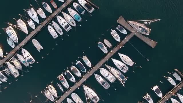 Marina Overhead Aerial: Stock Video