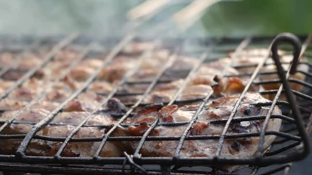 Barbecue In The Open Air: Stock Video