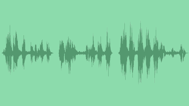 Forest Ambience With Crow: Sound Effects