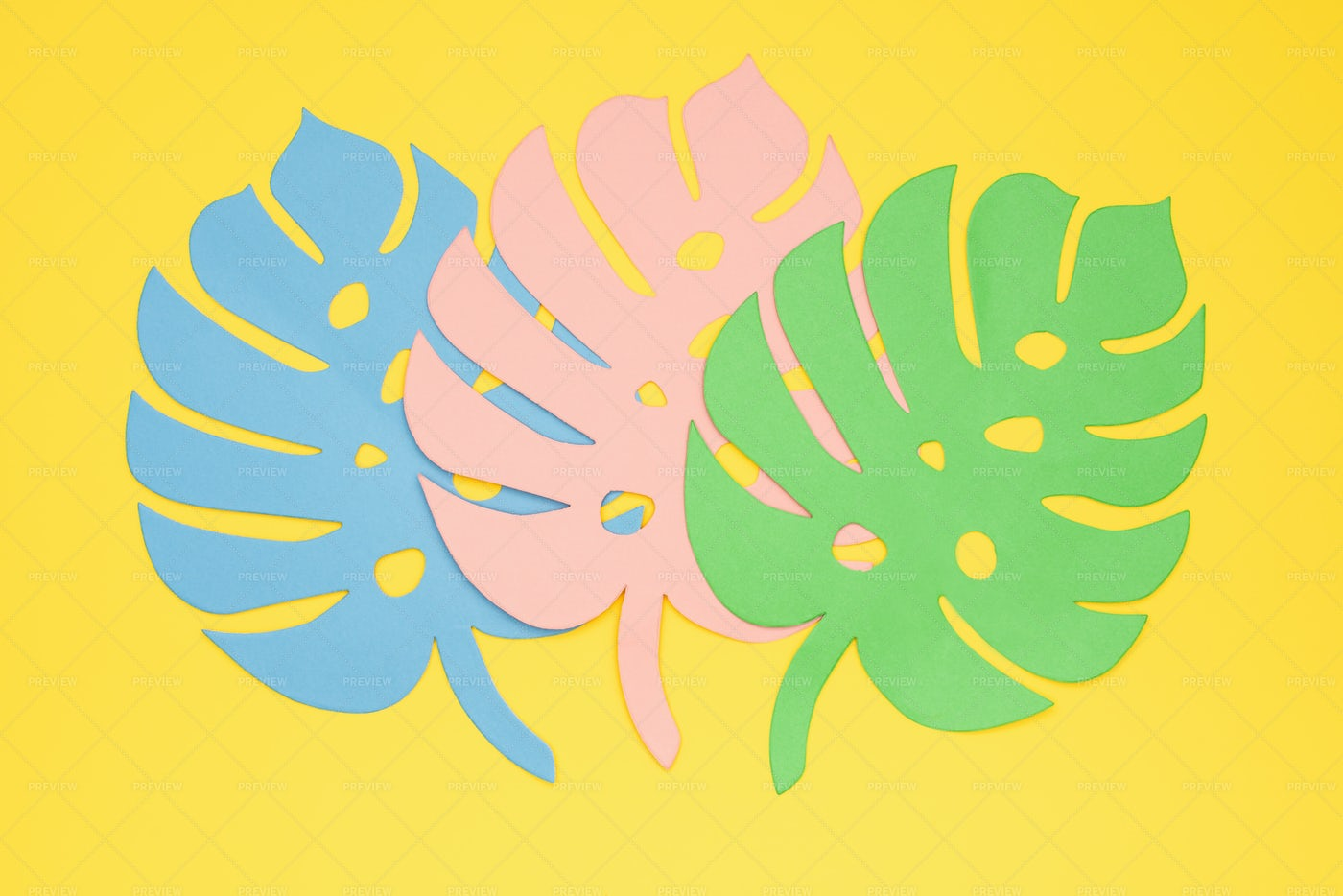 Exotic Tropical Concept.: Stock Photos