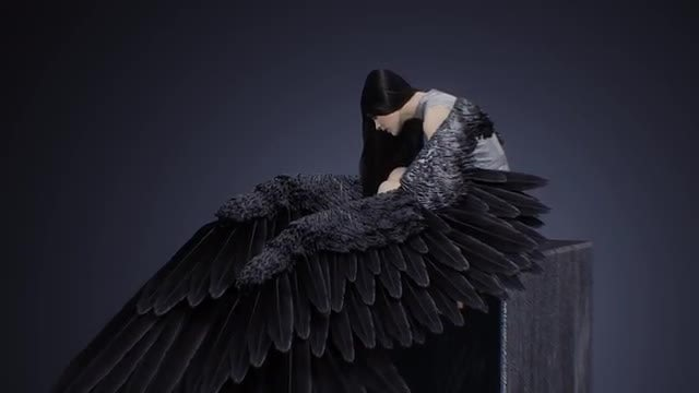 Raven-Haired Beauty With Wings: Stock Motion Graphics