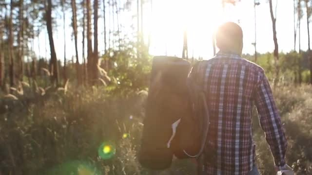 Sunset Adventures In The Woods: Stock Video
