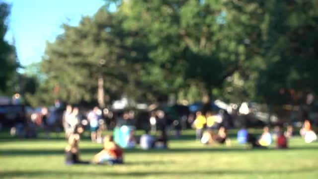 People Out In The Park: Stock Video