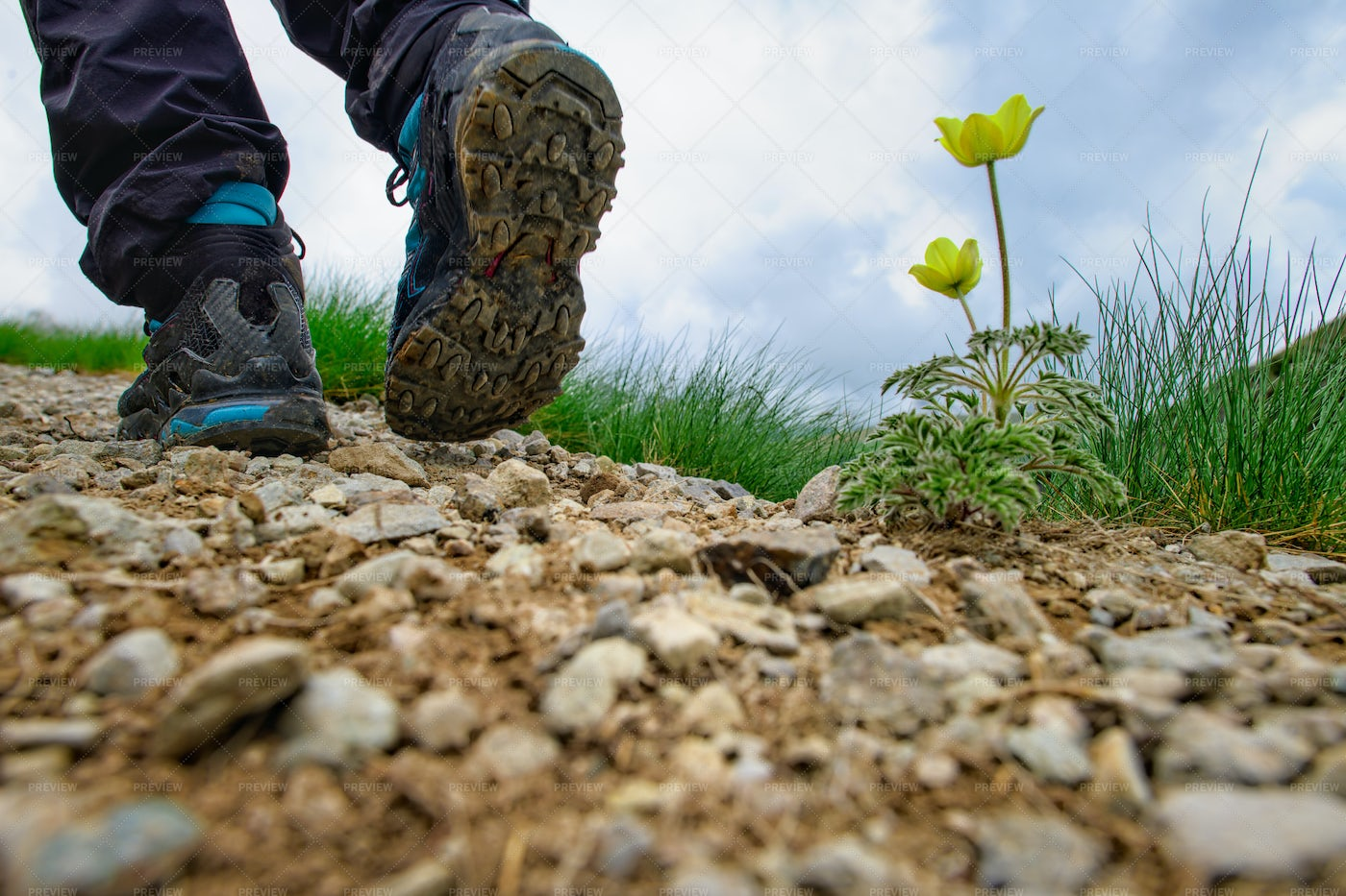 Mountain Trail With Dirty Shoes: Stock Photos