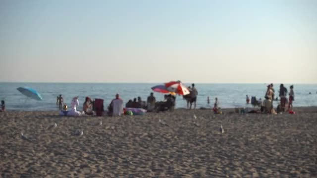 People Relaxing On The Beach: Stock Video