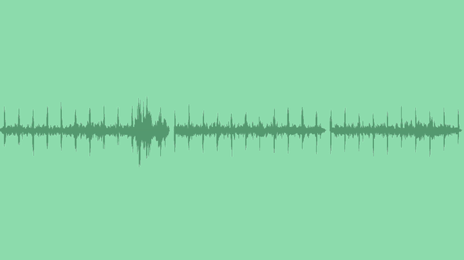 Forest Ambience With Wind And Cuckoo: Sound Effects