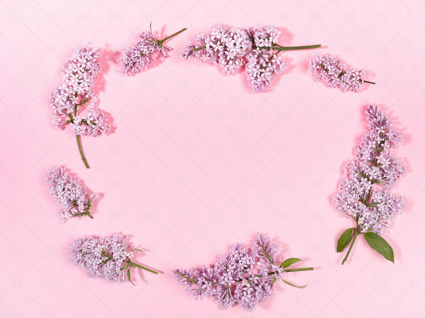 Floral Pink Background: Stock Photos
