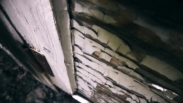 Old Dried Paint On A Door: Stock Video