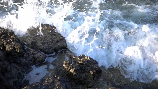 Wild Waves Closeup : Stock Video
