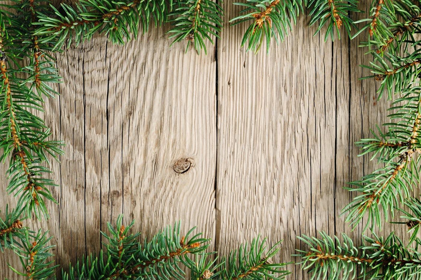 Frame Of Christmas Branches: Stock Photos