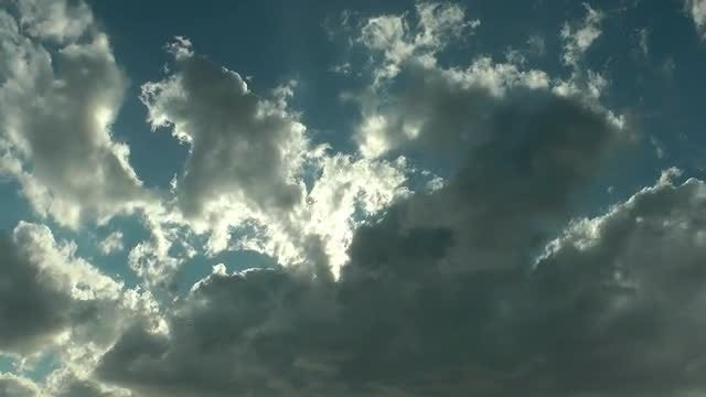 Moving Cumulus Clouds With Seabirds: Stock Video