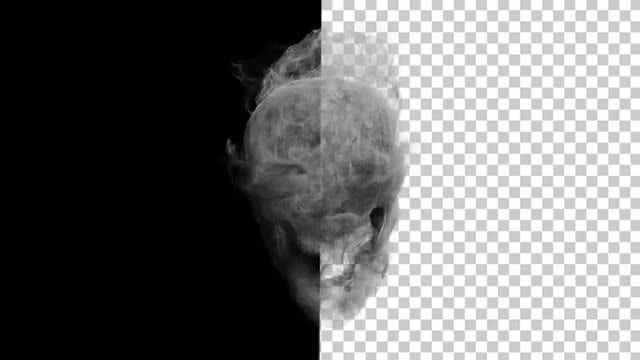Smoke Skull In Alpha Channel : Stock Motion Graphics