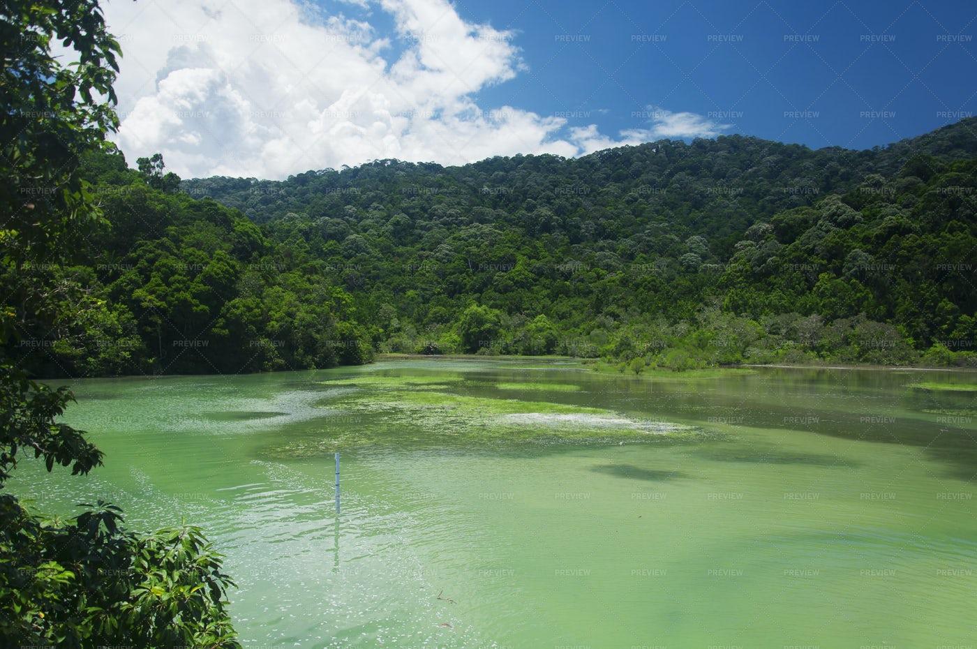 Meromictic Lake Penang Malaysia: Stock Photos