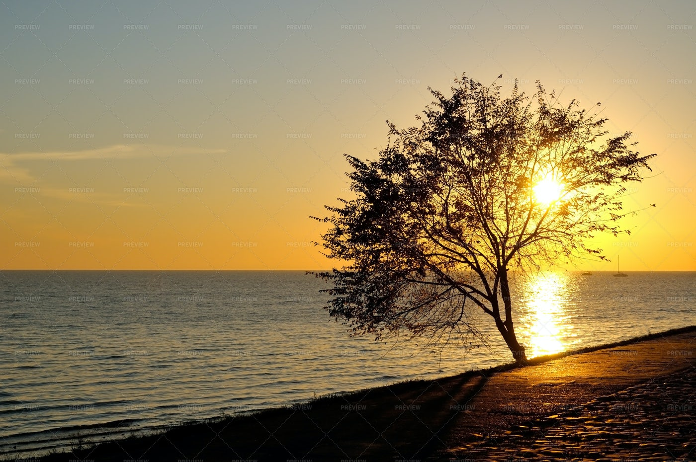 Sunrise On Seaside: Stock Photos