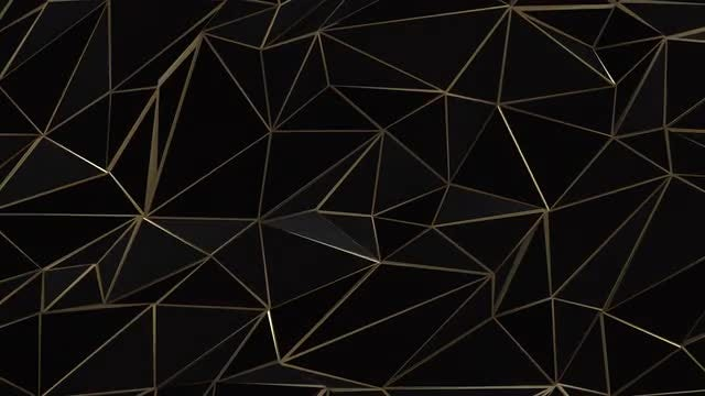 Black-Gold Low Poly Plexus : Stock Motion Graphics