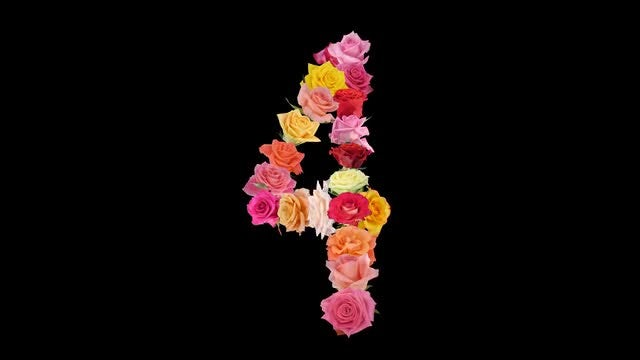 Montage of Rainbow Roses In Number 4 Shape: Stock Video