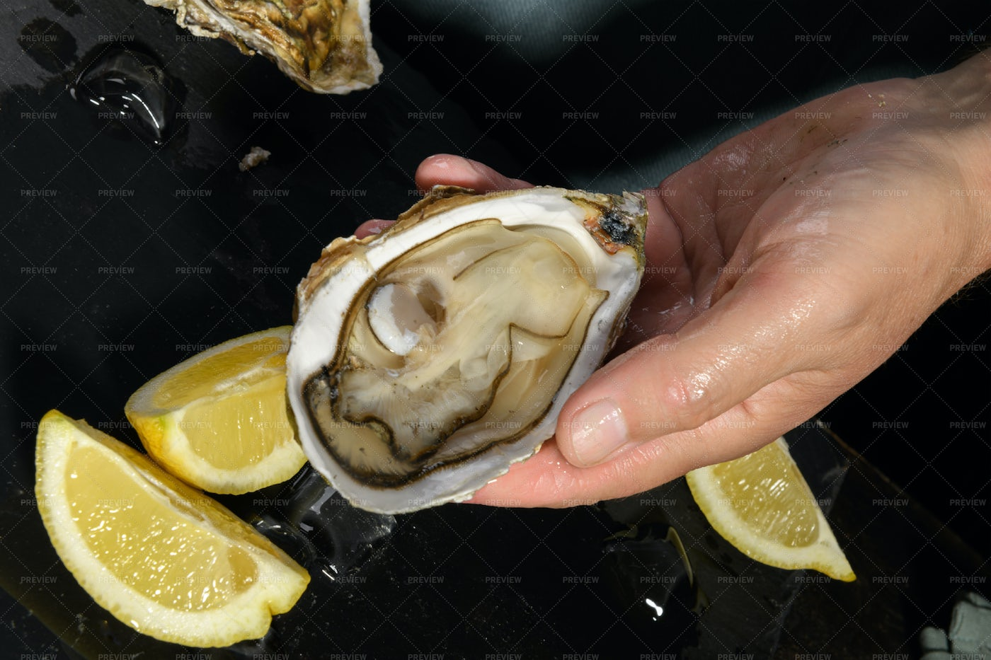 Opened Oyster: Stock Photos
