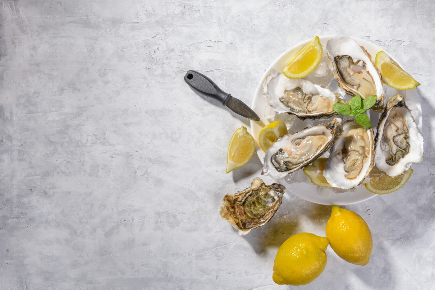 Fresh Oysters: Stock Photos