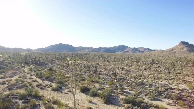 Aerial Of Desert: Stock Video