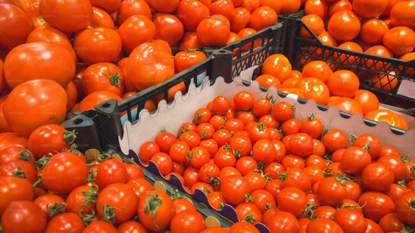 Tomatoes Showcase: Stock Photos