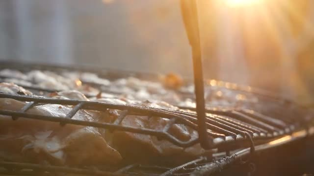 Delicious Meat Cooked Outdoors: Stock Video