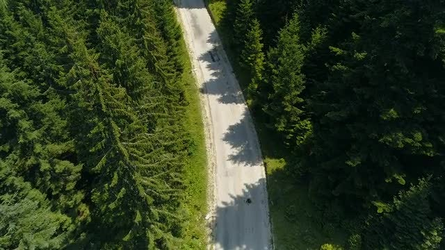 Aerial View Of Forest Road: Stock Video