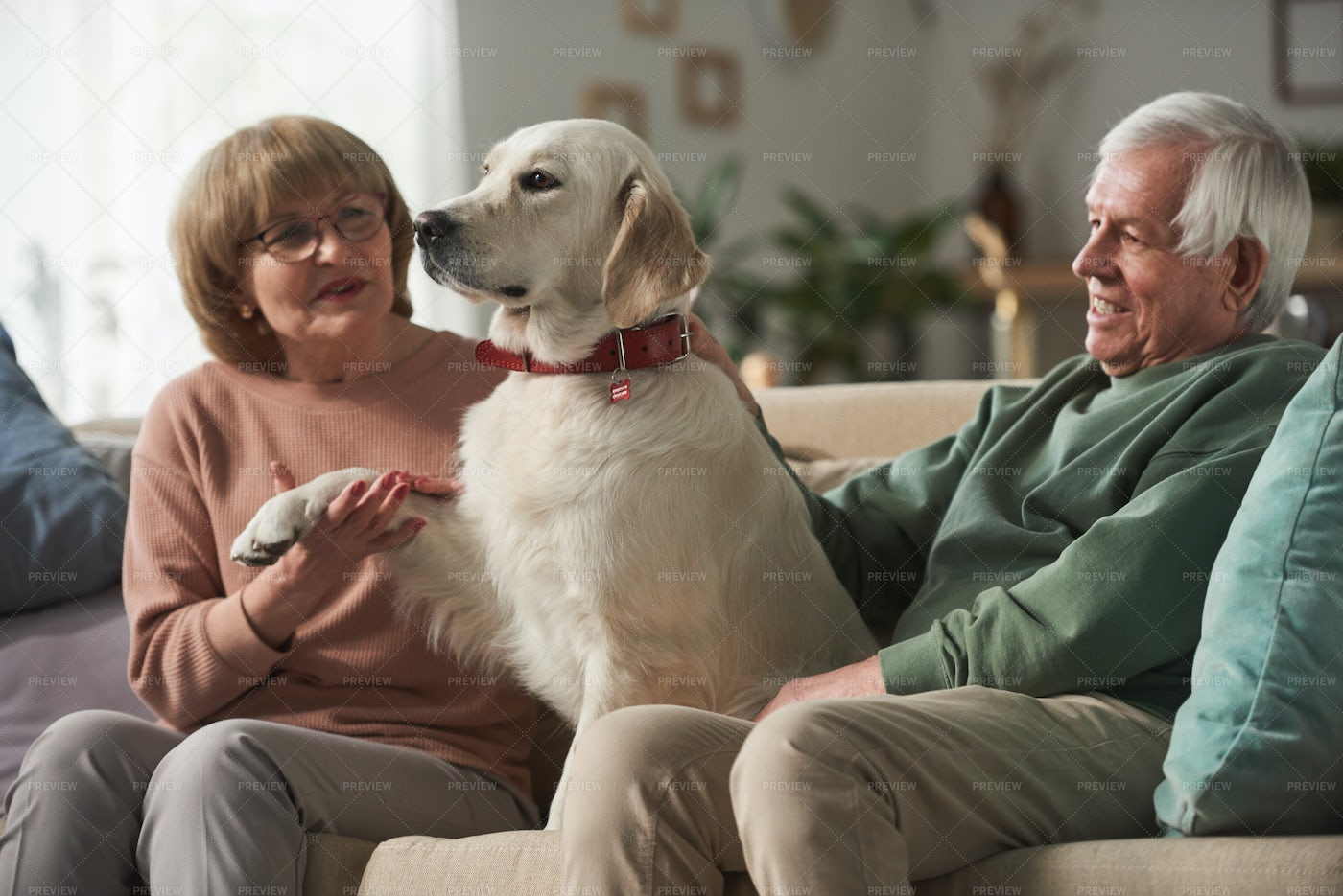 Senior Couple With Dog At Home: Stock Photos