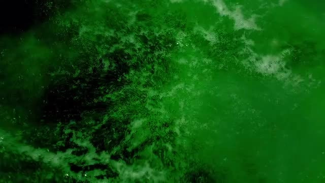 Green Water Boiling In Water: Stock Video